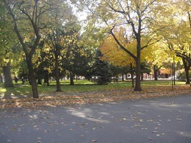 parc mullins et grand trunk