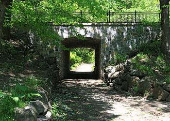 pont mont royal