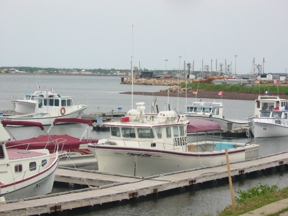 port de shippagan