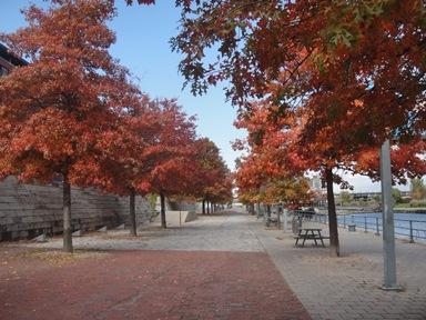 quai canal lachine