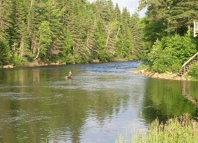 riviere ste marguerite la pêche