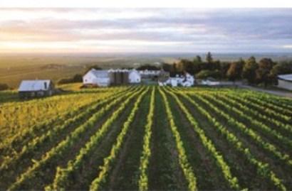 route des vins de la monteregie