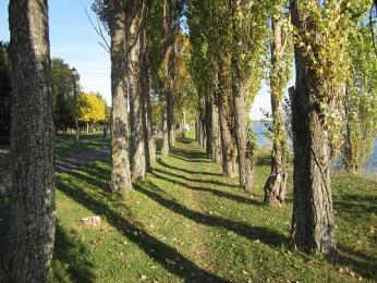 sentiers du parc