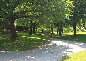 sentiers du parc westmount