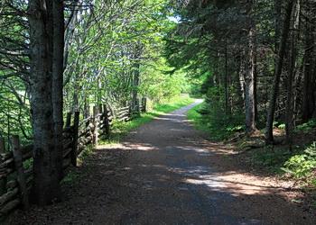 sentiers du parc du bic