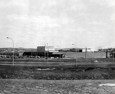 usine lowney