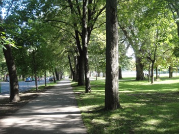 vue des pistes cyclables du parc lafontaine
